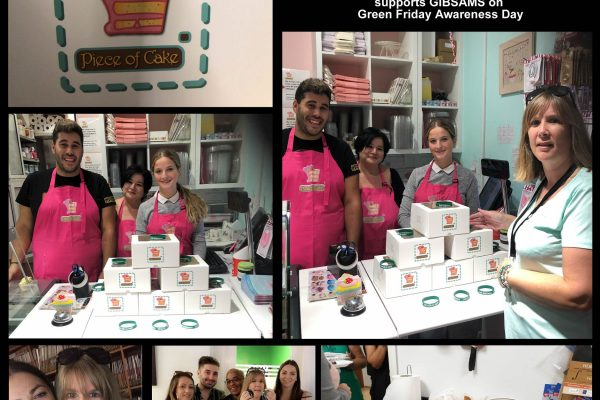 Piece of Cake donated cup-cakes and in partnership with Soveriegn Ins Services raised funds for GibSams